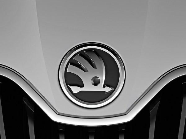 Фото логотипа фирмы Skoda.